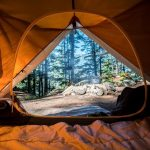 How to Choose 10 or 20 Person Camping Trip Tents